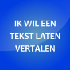 Website laten vertalen?